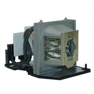 EcoLAP - Acer EC.J4800.001 Ersatzlampe