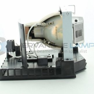EcoLAP - RICOH 308930 Ersatzlampe