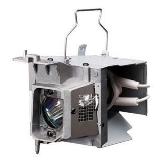EcoLAP - RICOH 512758 Ersatzlampe