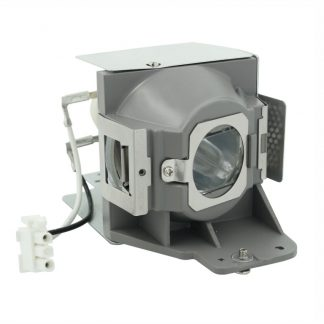 EcoLAP - Acer MC.40111.002 Ersatzlampe / Modul MC.JFZ11.001