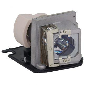 EcoLAP – ACER EC.J9900.001 – Ersatzlampe
