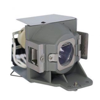 EcoLAP – BENQ 5J.J9P05.001 – Ersatzlampe mit Gehäuse