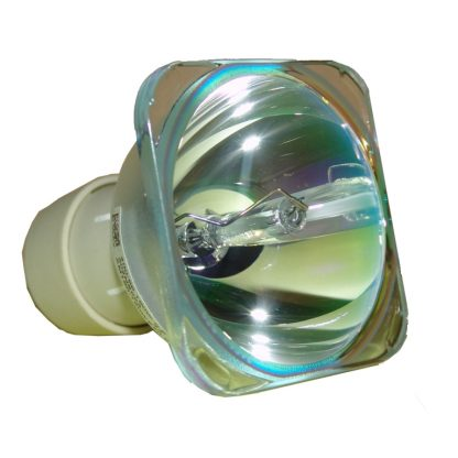 Philips UHP Beamerlampe f. Optoma BL-FU195C ohne Gehäuse SP.72J02GC01