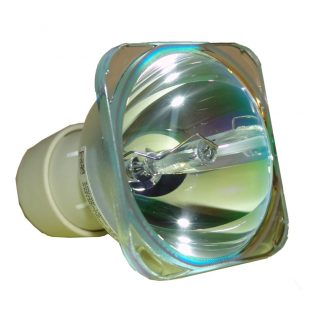 Philips UHP Beamerlampe f. Optoma BL-FU190F ohne Gehäuse PQ684-2400