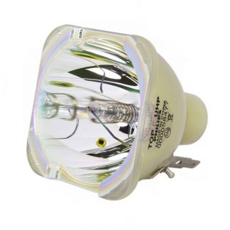 Philips UHP Beamerlampe f. Optoma BL-FU310D ohne Gehäuse SP.70B01GC01