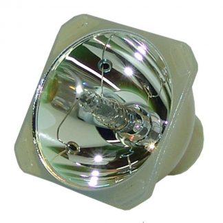 Philips UHP Beamerlampe f. Optoma SP.85F01G.001 ohne Gehäuse BL-FU220B